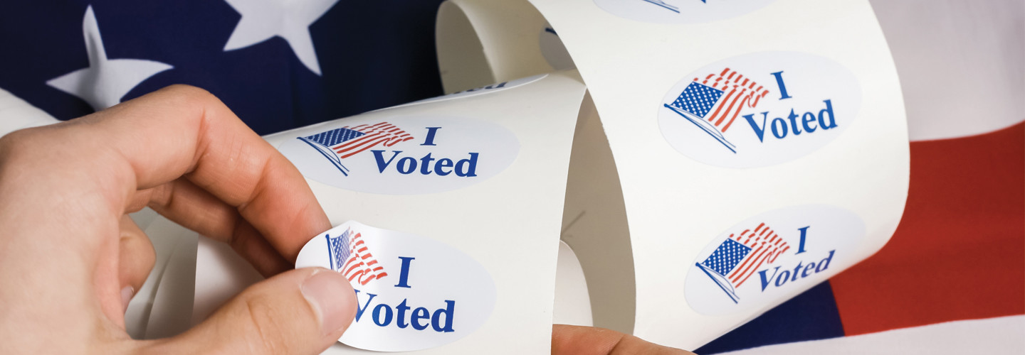 Voting 2020 election