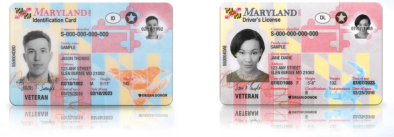 maryland mva drivers license transfer